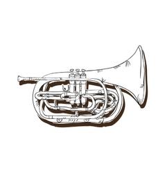 Trumpet musical instrument vector