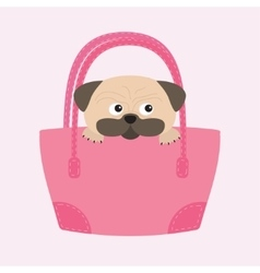 Pug dog mops in the bag Cute cartoon character vector image
