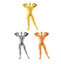 Abstract bodybuilder figure vector