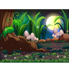 An enchanted forest vector