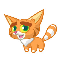 cartoon orange cat vector image