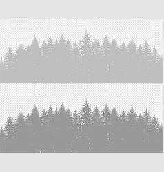 Coniferous pine forest with fir trees transparent vector