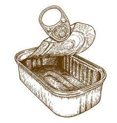 engraving of open tin can conserve vector image