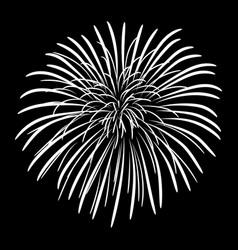 Fireworks on a black sky background vector