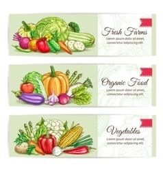 Fresh organic farm vegetables banner set vector image