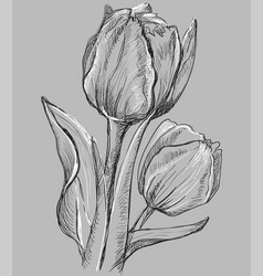 Grey flower 10 vector