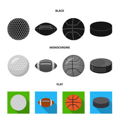 isolated object of sport and ball symbol vector image