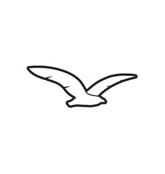 seagull bird icon design template isolated vector image