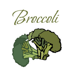 tasty veggies broccoli vector image