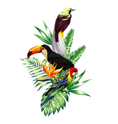 tropical birds composition vector image