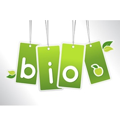 Bio hanging cards vector image