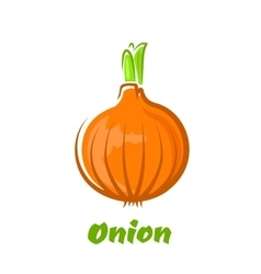 Brown bulb onion with green sprouts vector image