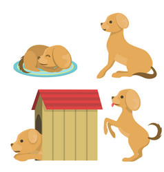cute playing dog character funny purebred puppy vector image