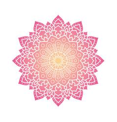 Decorative floral pink mandala ethnicity artistic vector