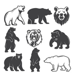 monochrome of stylized bears vector image