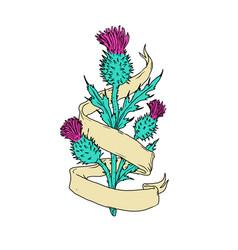 Scottish thistle with ribbon color drawing vector