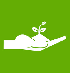 sprout in the human hand icon green vector image