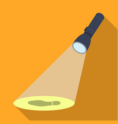 The beam of the flashlight illuminates the vector