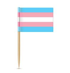 Transgender flag toothpick flag isolater on white vector