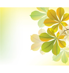 Beautiful yellow background with chestnut leaves vector image