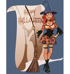 Cartoon woman witch broom congratulations vector