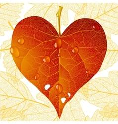 fallen red leaf in shape heart vector image