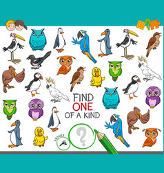 Find one a kind with birds animal characters vector