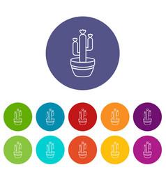 Large pot cactus icons set color vector