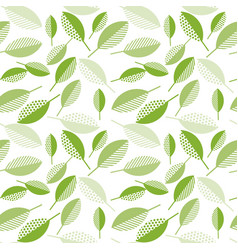 spring green leaves abstract on wight background vector image