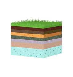 Structure soil layers diagram vector