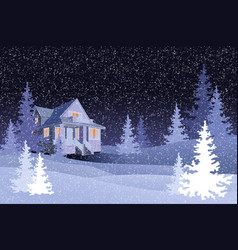 winter forest with black night sky vector image