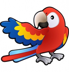 macaw parrot illustration vector image