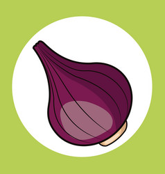 red onion healthy fresh image vector image