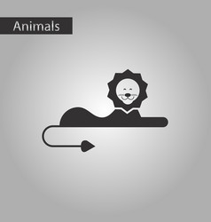 black and white style icon lion vector image vector image