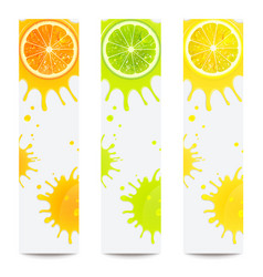 banners with juicy citrus fruits vector image