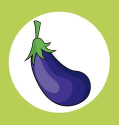 Eggplant healthy fresh image vector