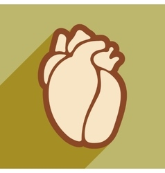 Icon of in human heart flat style vector