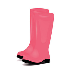 Pair of pink rubber rain boots symbol of garden vector