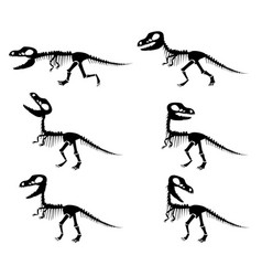 Silhouettes of the skeleton of a tyrannosaurus rex vector