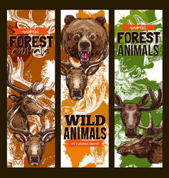 Animal sketch banner set with bear deer and elk vector