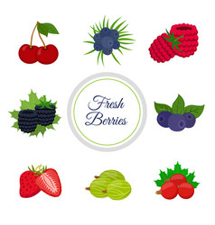 cartoon berries menu made in cartoon flat style vector image