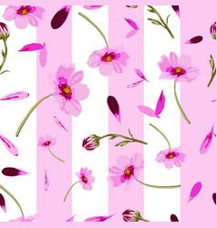 cosmos wedding-flowers in bloom seamless repeat vector image