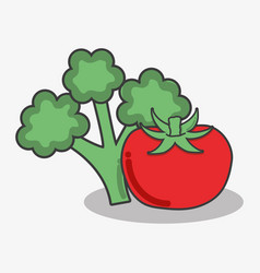 Delicious broccoli and tomato vegetables food vector