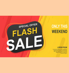 flash sale banner template special offer for big vector image