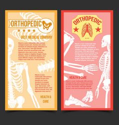 Medical orthopedic posters with human bones vector