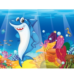 Under the Sea Background vector image vector image