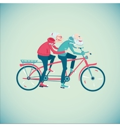 Elderly couple riding a bicycle vector image vector image