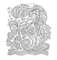 seahorse and sea shells adult coloring page sea vector image vector image
