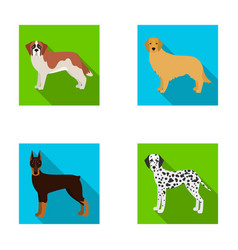 dobermandog domestic and other web icon in flat vector image