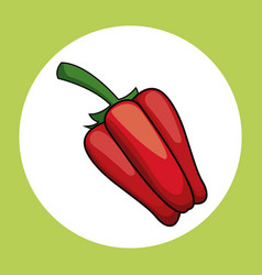 red pepper healthy fresh image vector image